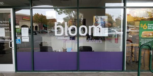 Bloom Window